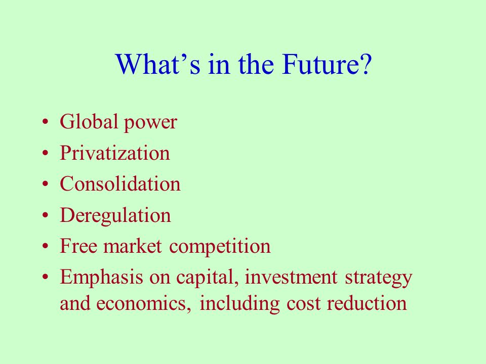 What's in the Future Global power Privatization Consolidation