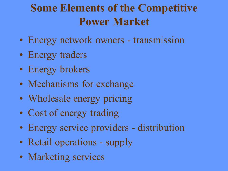 Some Elements of the Competitive Power Market