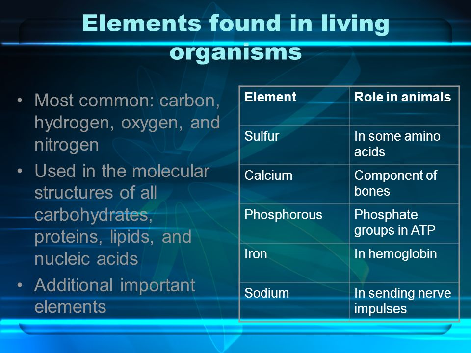 What Is The Role Of Water In Living Organisms?