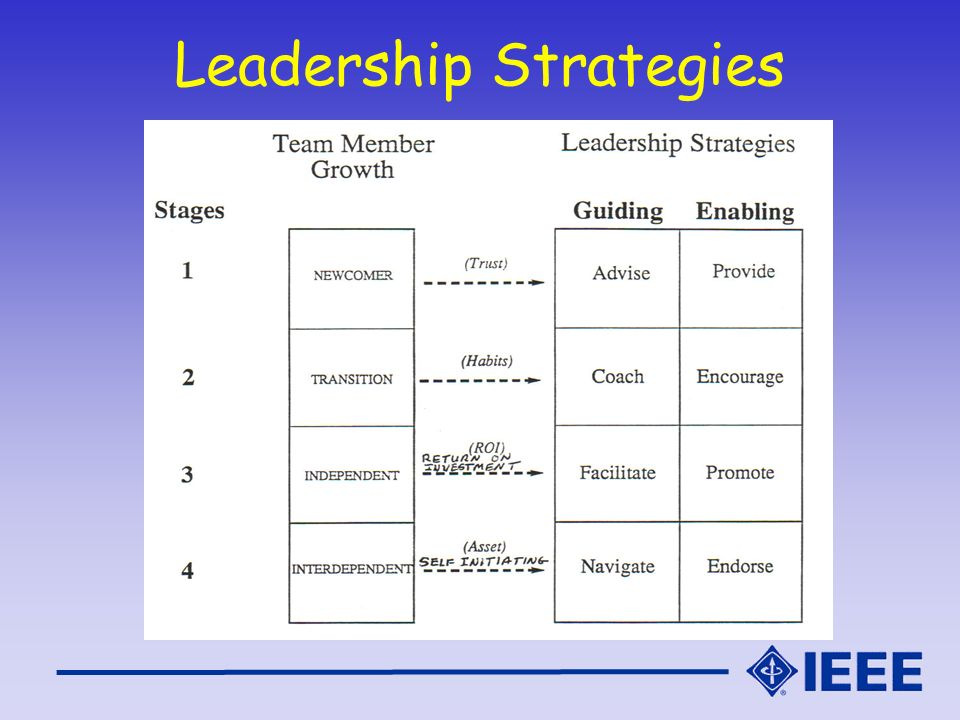 Leadership Strategies