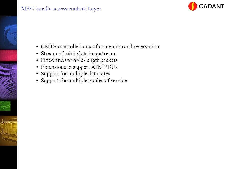 MAC (media access control) Layer