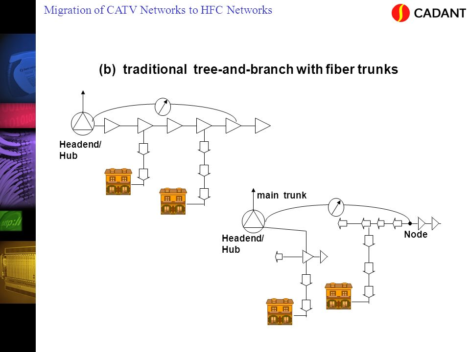 (b) traditional tree-and-branch with fiber trunks