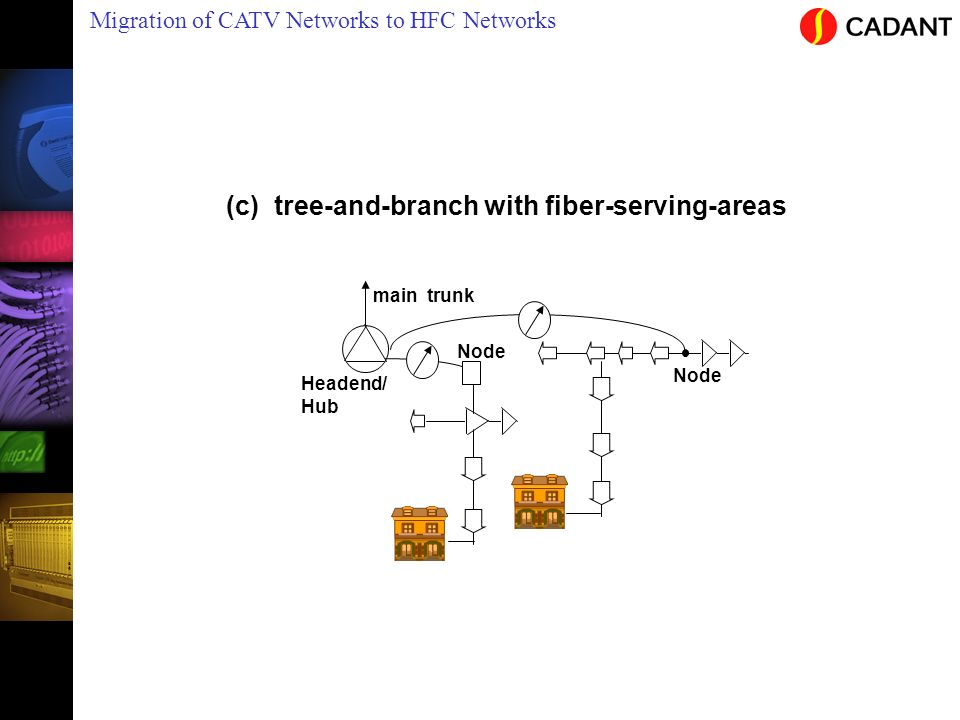 (c) tree-and-branch with fiber-serving-areas