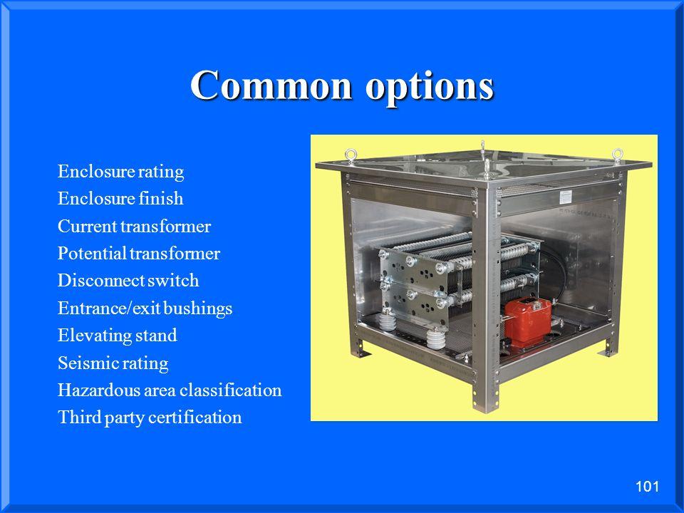 Common options Enclosure rating Enclosure finish Current transformer