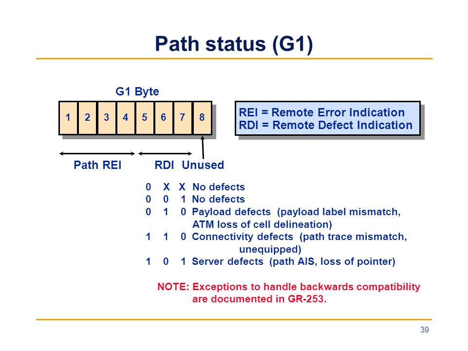 Path status (G1) G1 Byte REI = Remote Error Indication