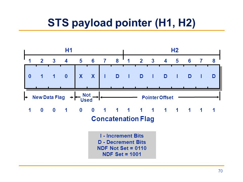 STS payload pointer (H1, H2)