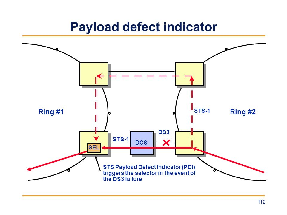 Payload defect indicator