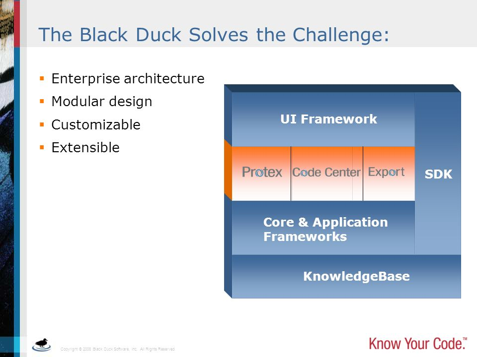 The Black Duck Solves the Challenge: