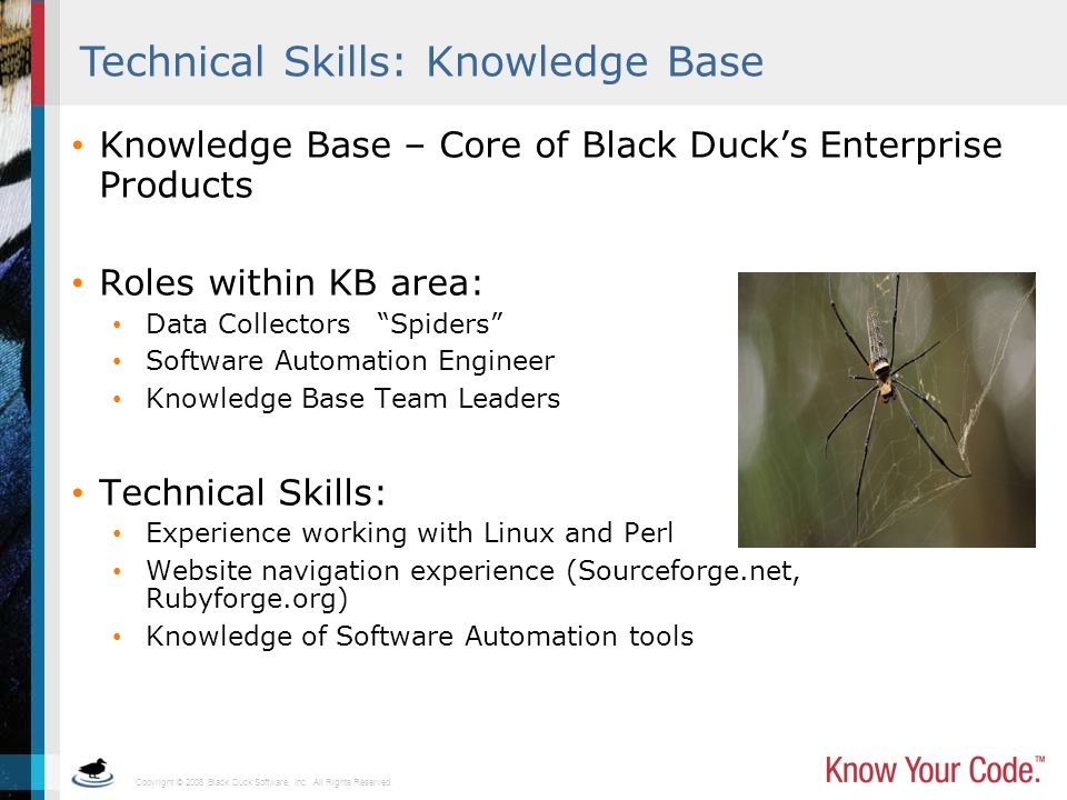Technical Skills: Knowledge Base