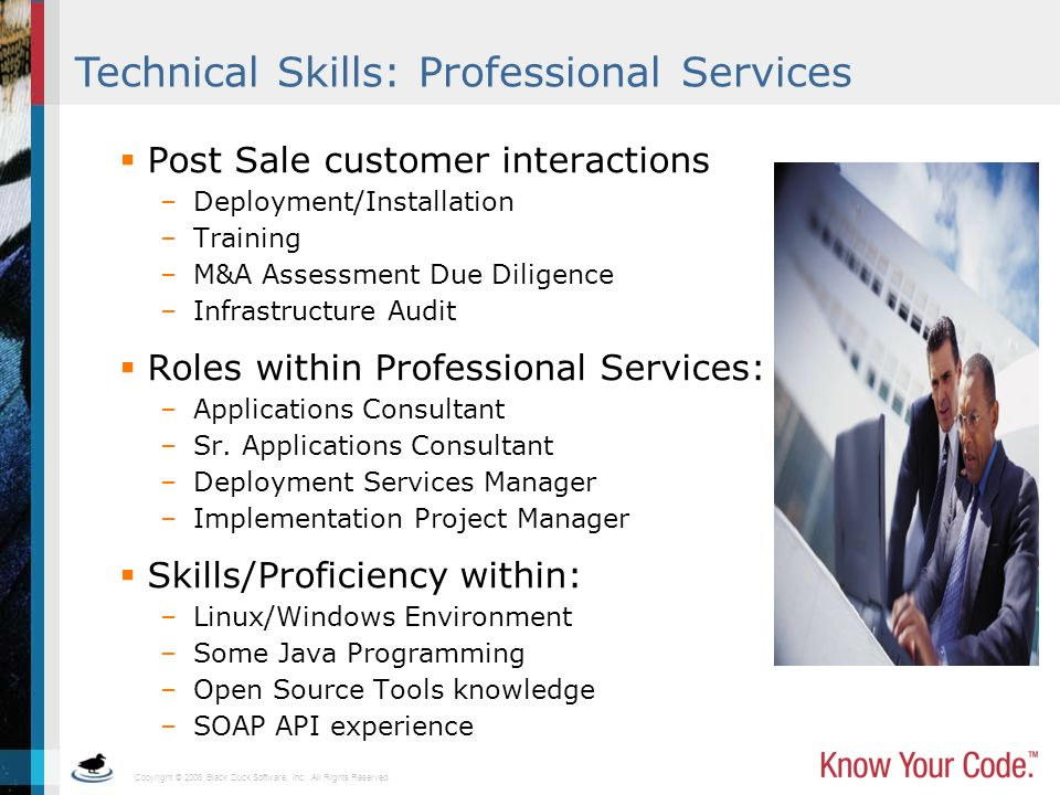 Technical Skills: Professional Services