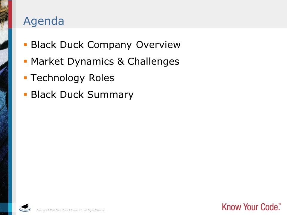 Agenda Black Duck Company Overview Market Dynamics & Challenges