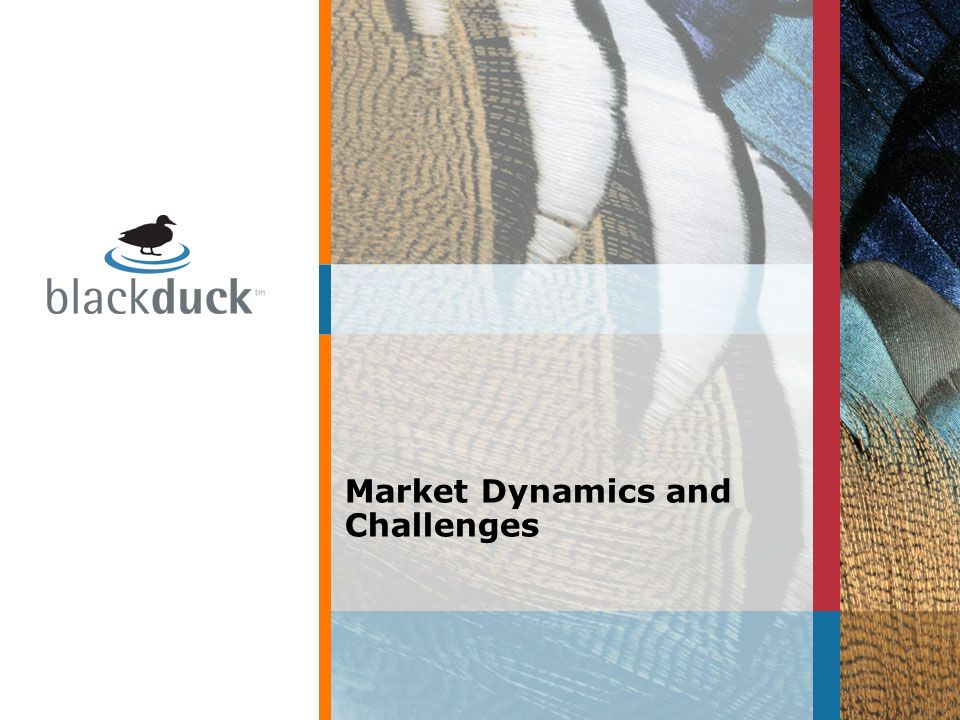 Market Dynamics and Challenges