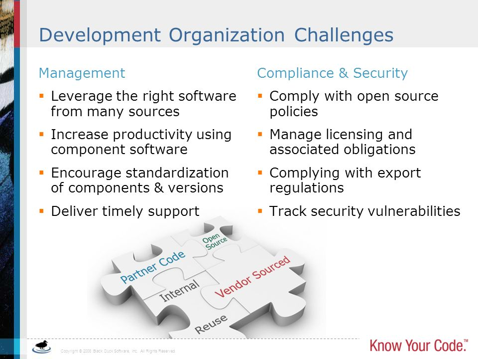 Development Organization Challenges