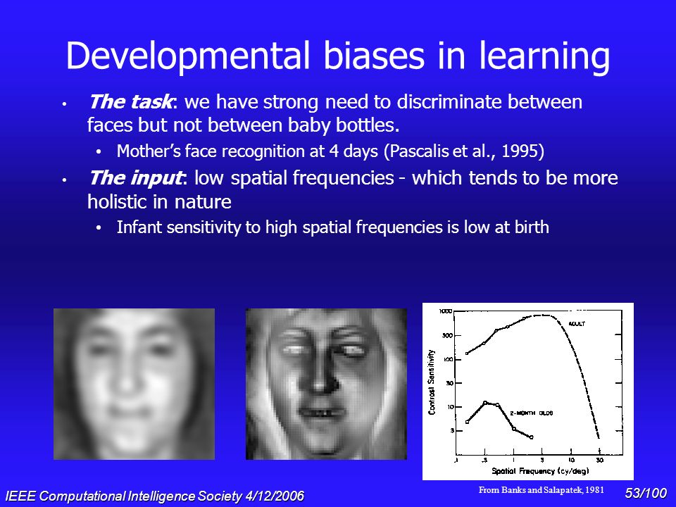 Developmental biases in learning