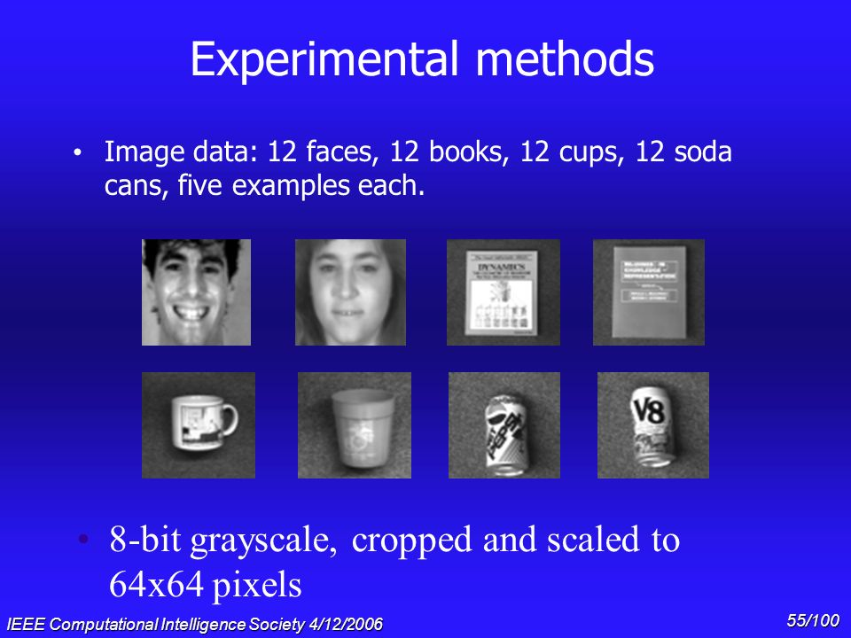 Gary Cottrell & * 07/16/96. Experimental methods. Image data: 12 faces, 12 books, 12 cups, 12 soda cans, five examples each.