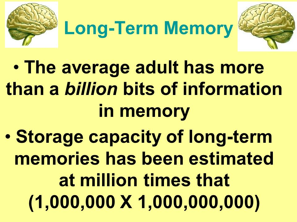 capacity of long term memory Your brain is a dynamic organ, constantly adapting and changing -- here are 11 surprising factors that can affect your memory either in a good or bad way.