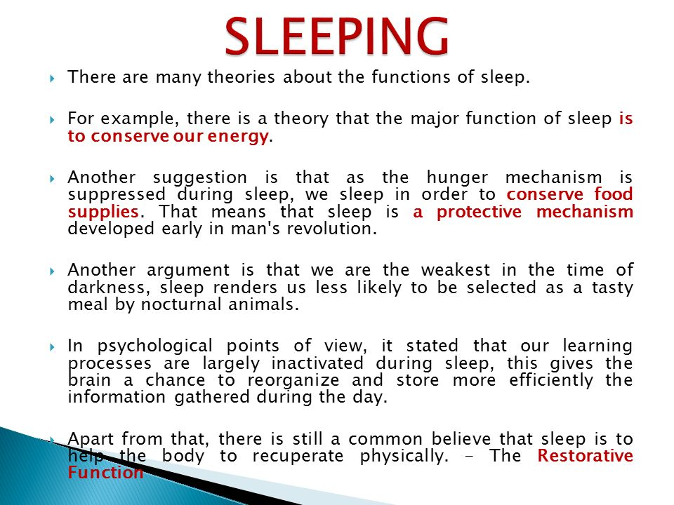 theories on stages of sleep Stage 4: deep sleep much like stage 3, throughout the night and within each sleep cycle time spent in stage 4 decreases and rem time increases these notes represent a detailed interpretation of the professor's lecture.