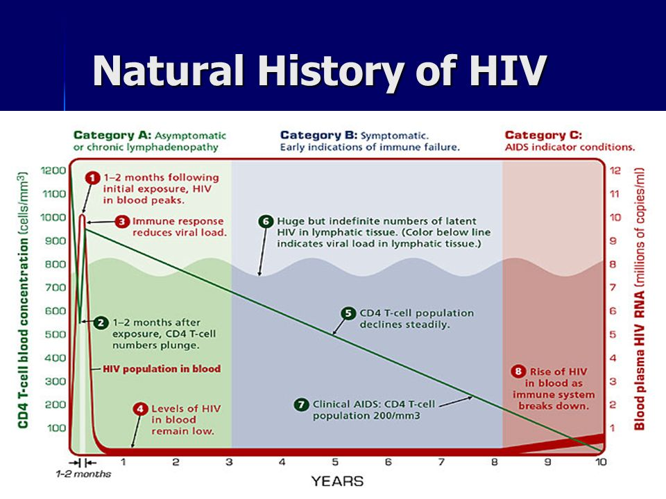 Hiv Natural History Of The Disease