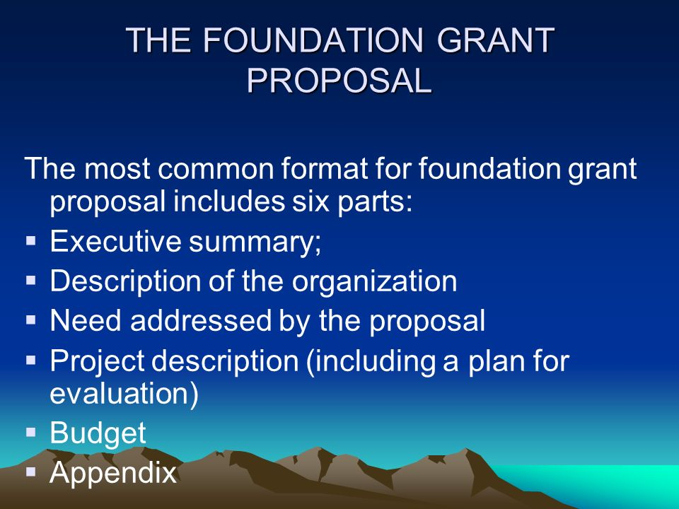 THE FOUNDATION GRANT PROPOSAL