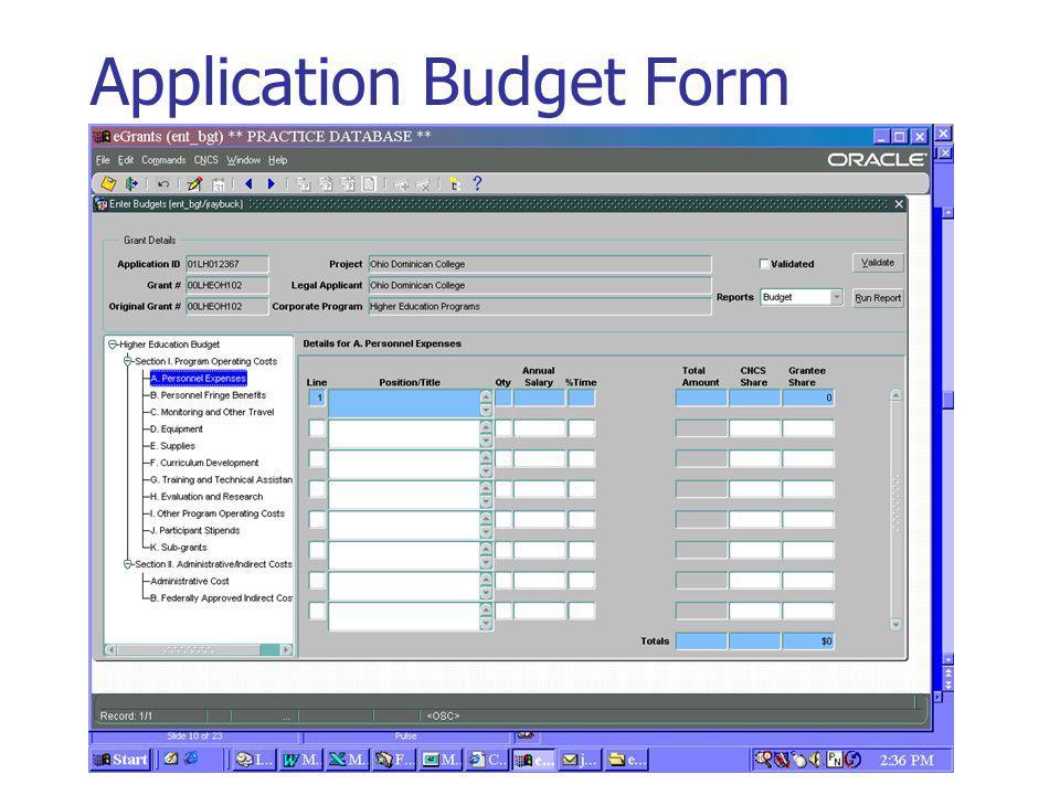 Application Budget Form