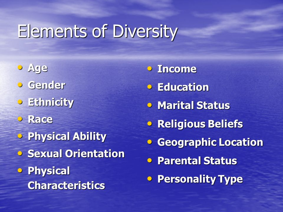 Elements of Diversity Age Gender Ethnicity Race Physical Ability