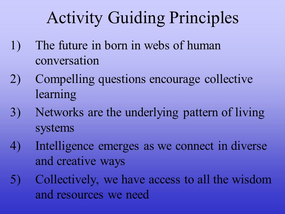 Activity Guiding Principles