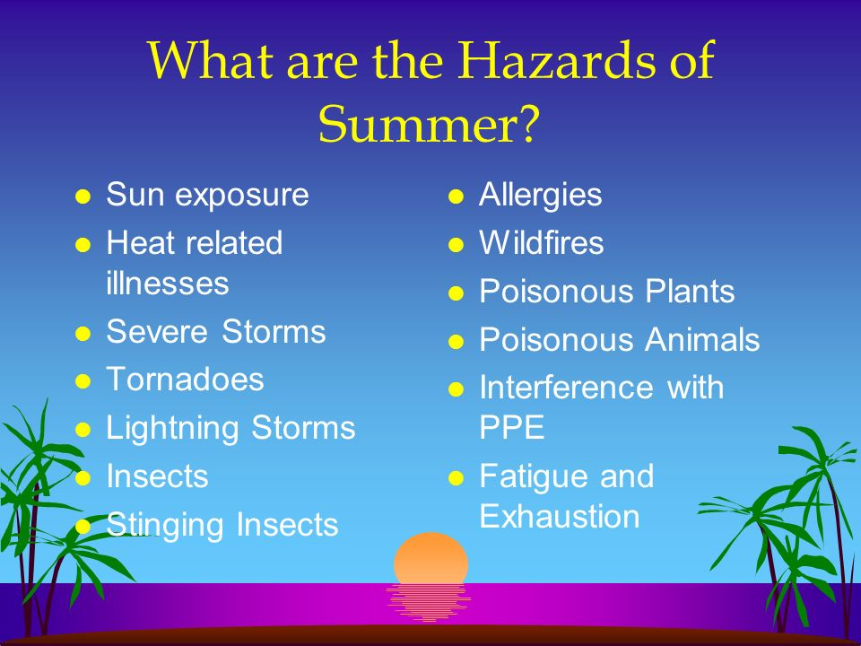 What are the Hazards of Summer