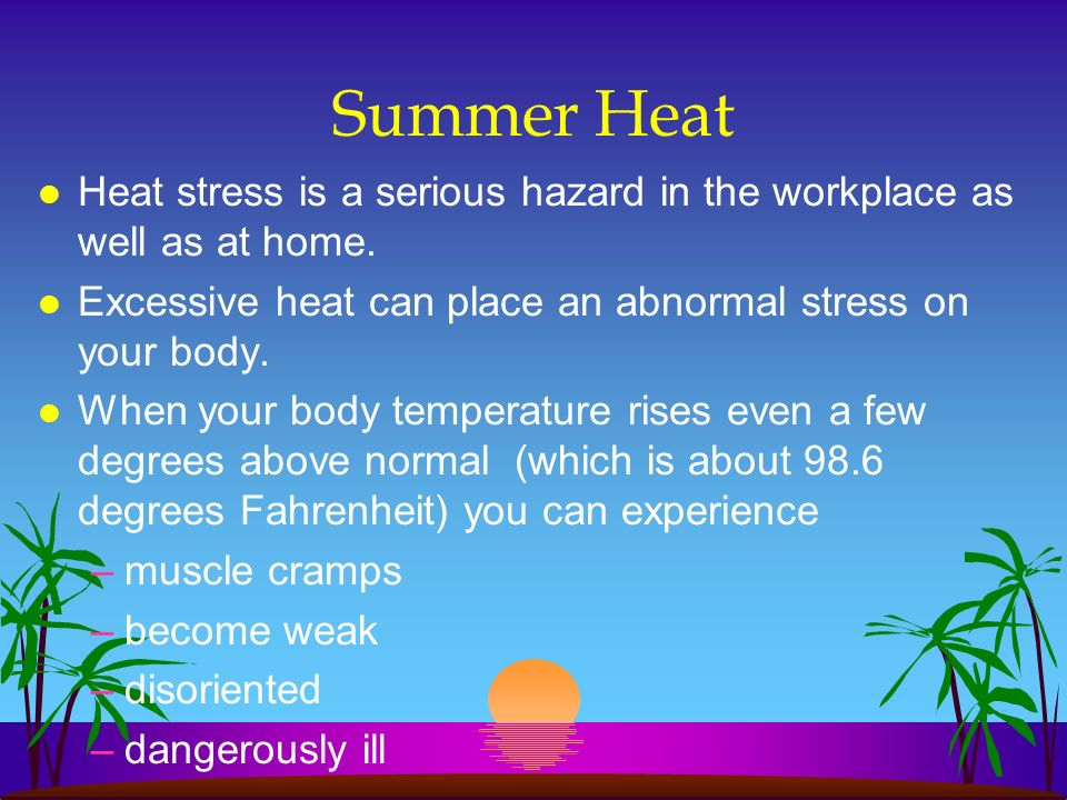 Summer Heat Heat stress is a serious hazard in the workplace as well as at home. Excessive heat can place an abnormal stress on your body.