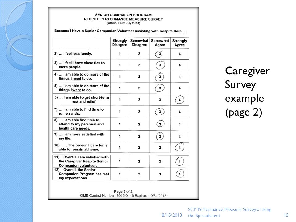 Caregiver Survey example (page 2)