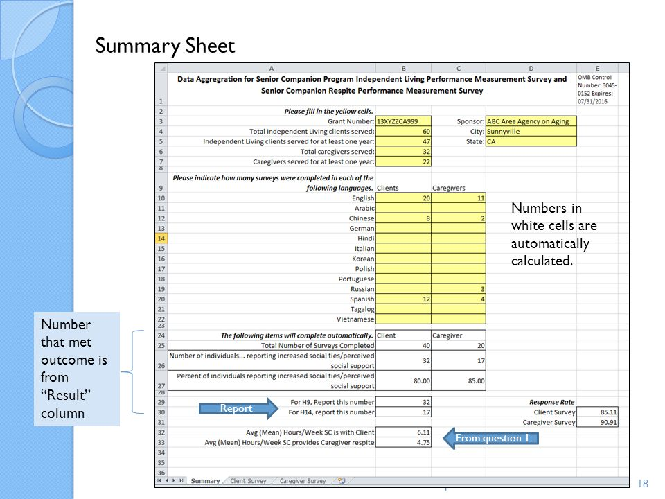 Summary Sheet Numbers in white cells are automatically calculated.