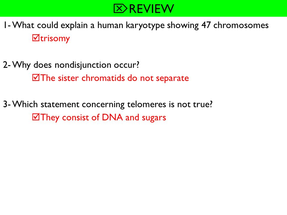 REVIEW 1- What could explain a human karyotype showing 47 chromosomes
