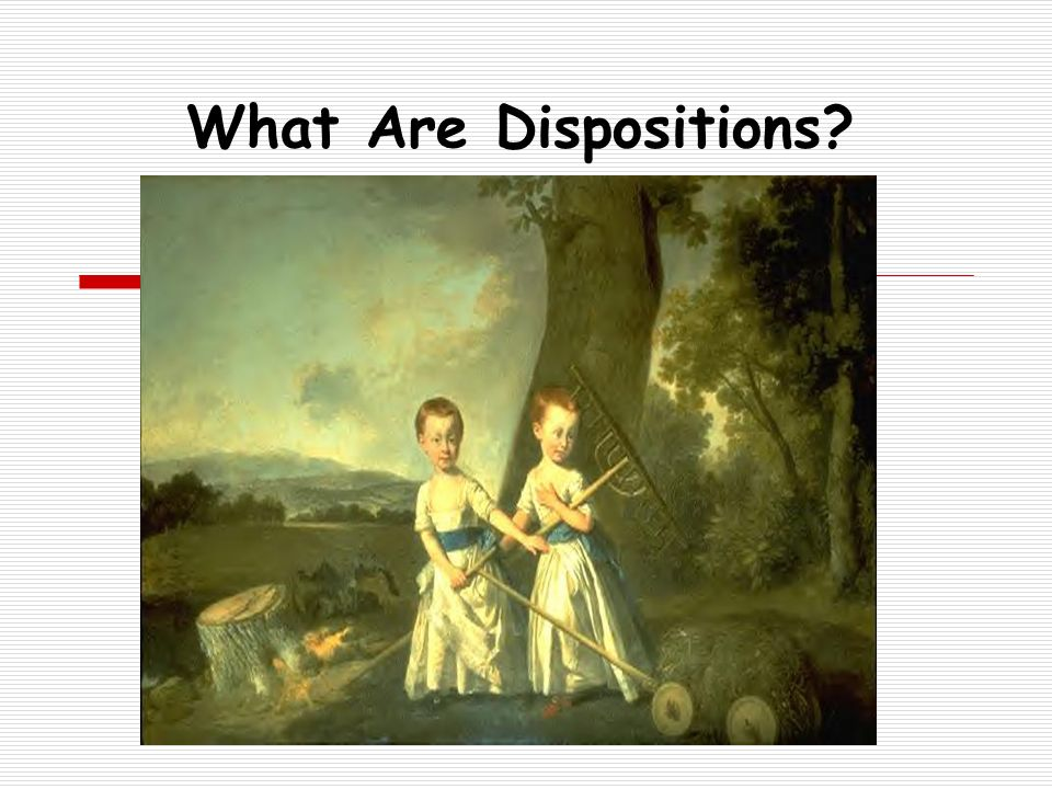What Are Dispositions Toward a Working Definition of Dispositions