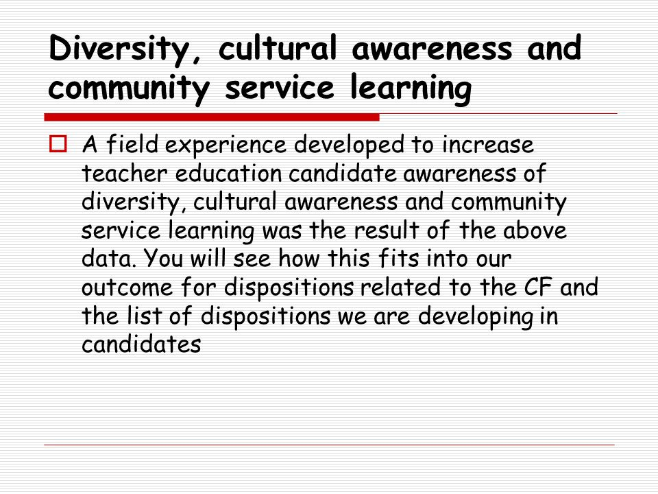 Diversity, cultural awareness and community service learning
