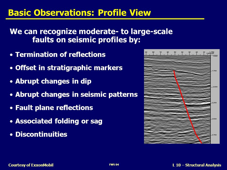 Basic Observations: Profile View