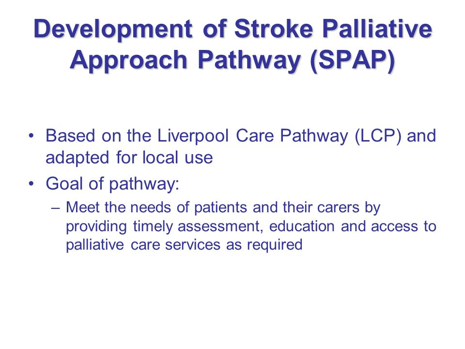 Development of Stroke Palliative Approach Pathway (SPAP)
