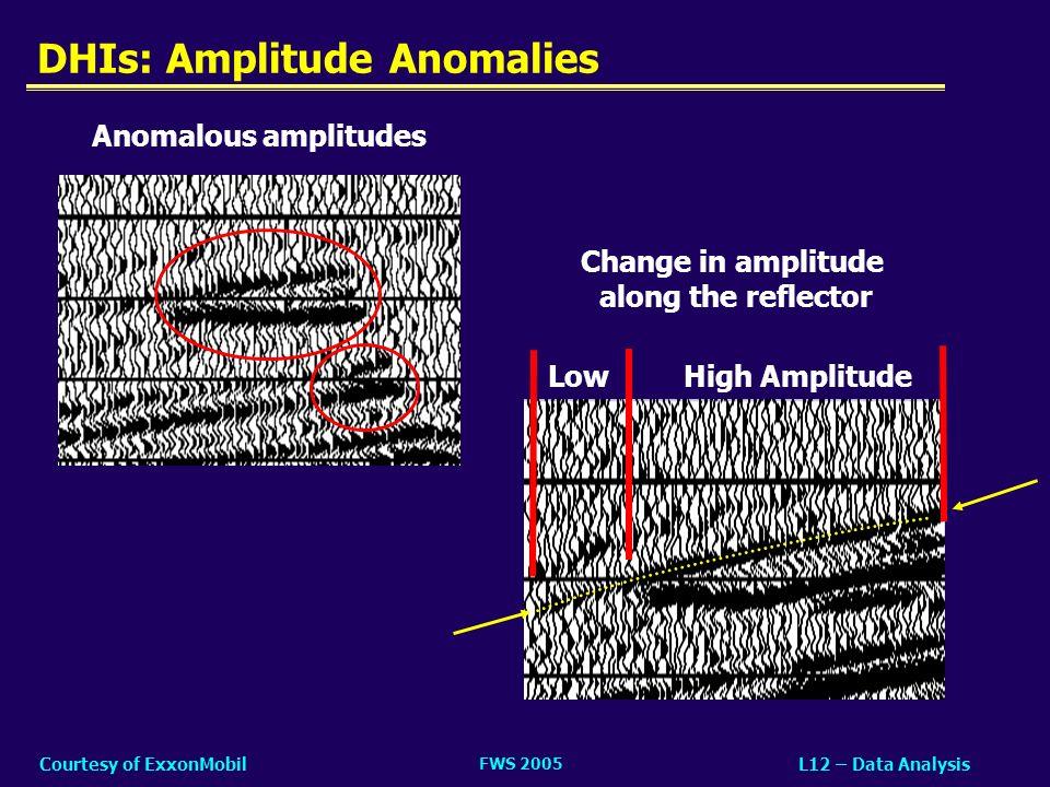DHIs: Amplitude Anomalies