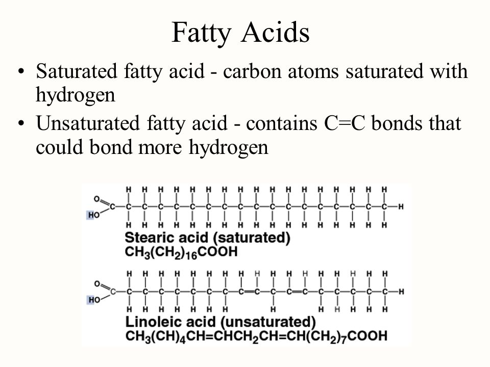 Fatty Acids Saturated fatty acid - carbon atoms saturated with hydrogen.