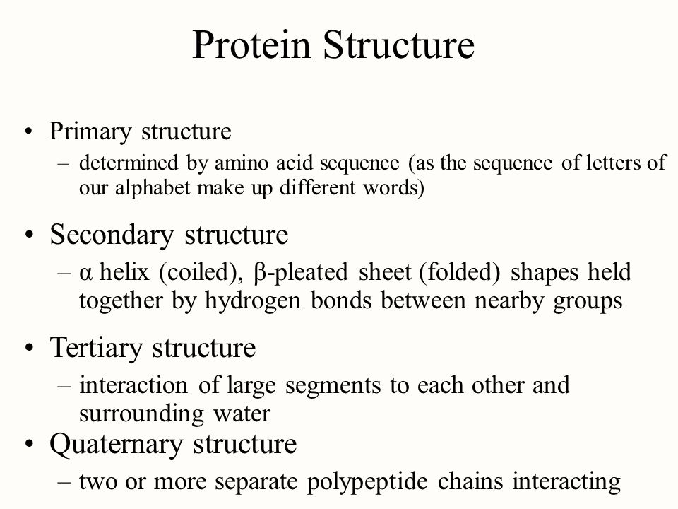 Protein Structure Secondary structure Tertiary structure