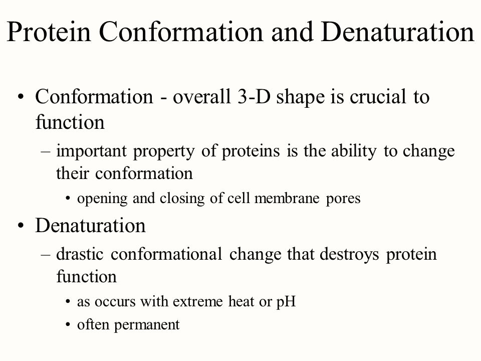 Protein Conformation and Denaturation
