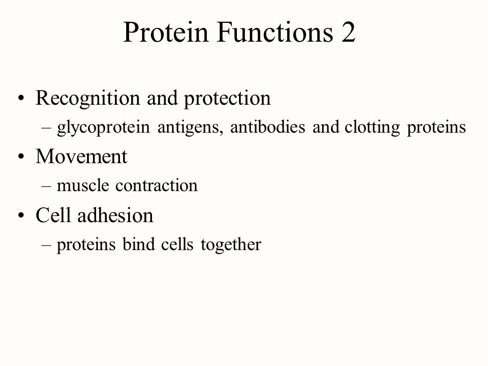 Protein Functions 2 Recognition and protection Movement Cell adhesion