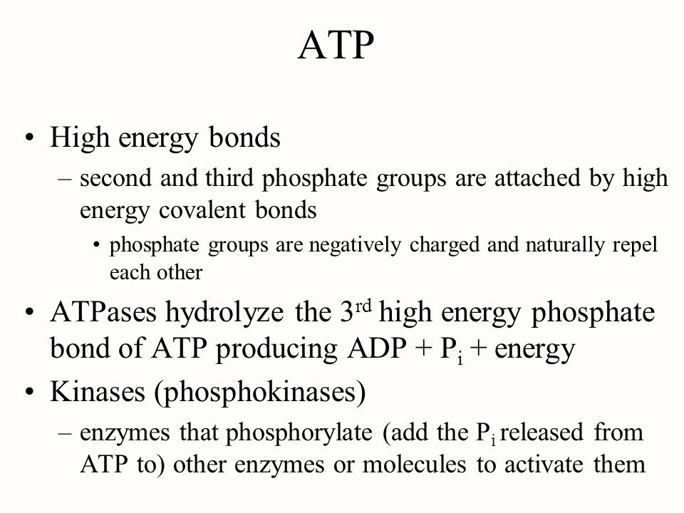 ATP High energy bonds. second and third phosphate groups are attached by high energy covalent bonds.