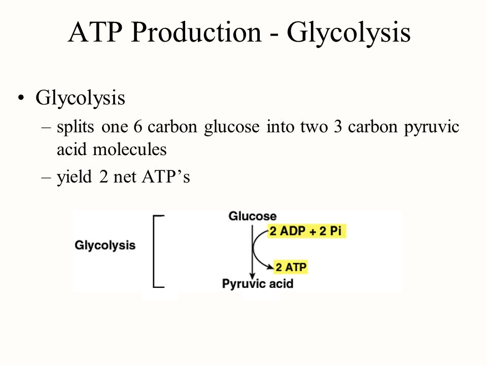 ATP Production - Glycolysis