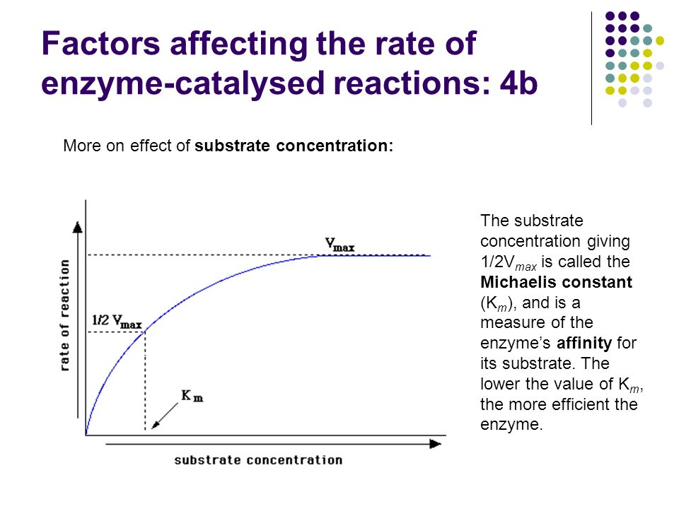 Factors affecting the rate of enzyme