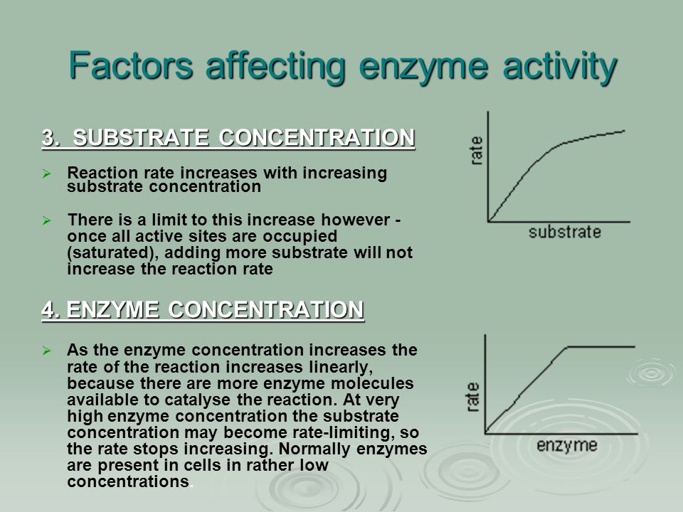 factors that affect enzyme activity The factors that affect enzyme activity are: temperature, concentration of substrate (the amount of the substance the enzyme is going to work on) and the ph of the medium it w orks.
