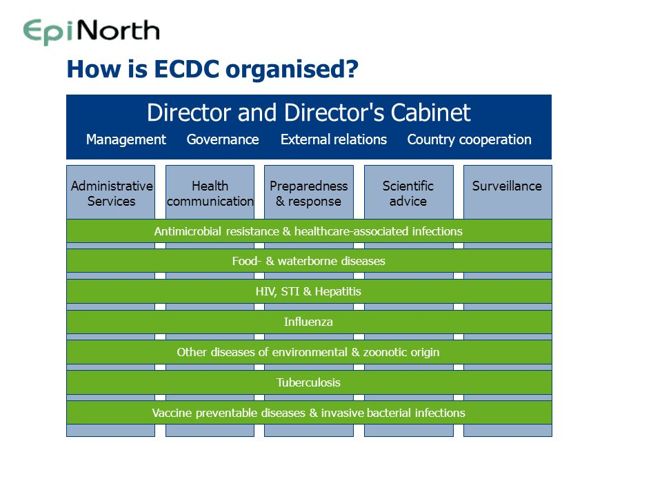 Director and Director s Cabinet