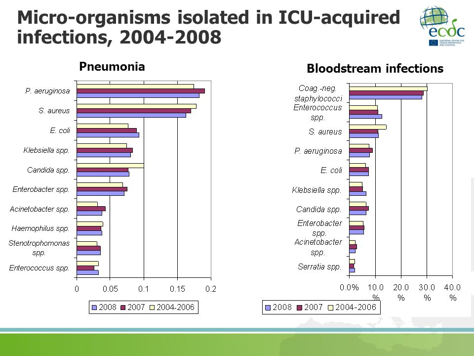 Micro-organisms isolated in ICU-acquired infections, 2004-2008