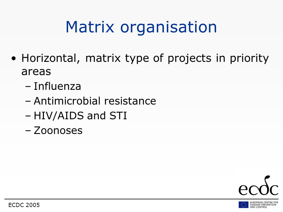 Matrix organisation Horizontal, matrix type of projects in priority areas. Influenza. Antimicrobial resistance.