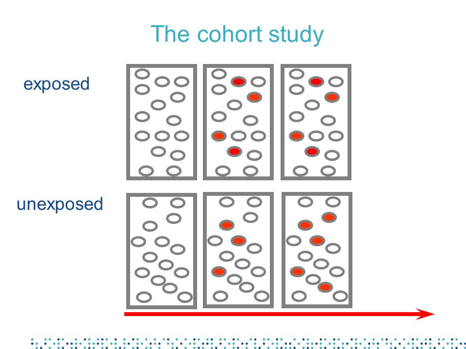 The cohort study exposed unexposed