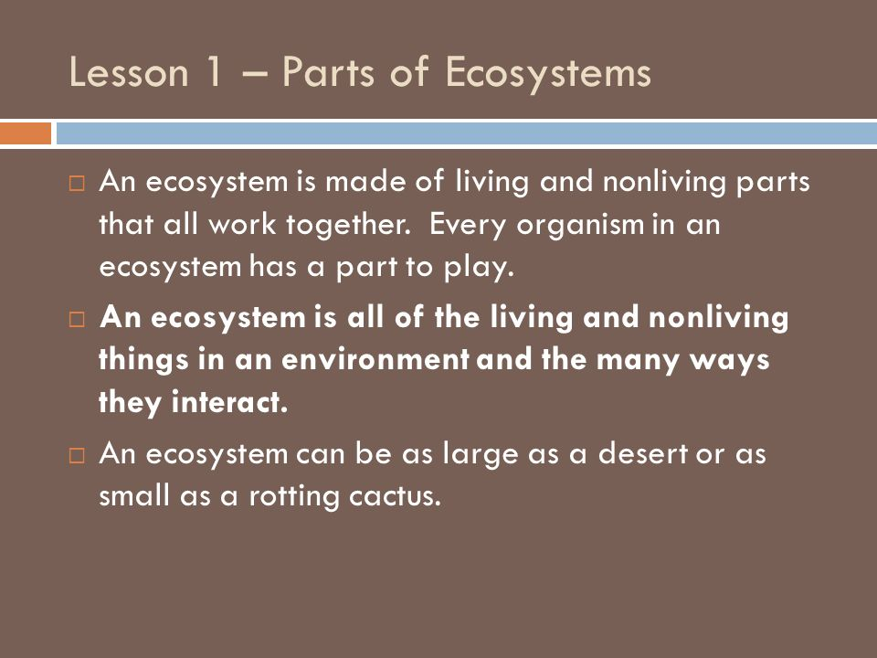 Lesson 1 – Parts of Ecosystems