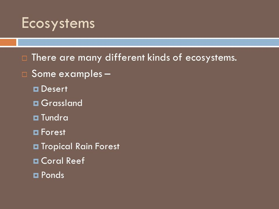 Ecosystems There are many different kinds of ecosystems.